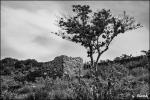 photo-VISAOFF-3